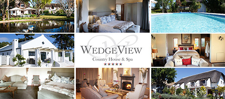 WedgeView